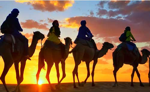 Morocco Desert Discovery Tour  - 4 Days